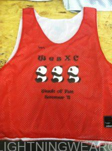 Youth Pinnies