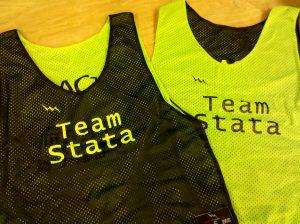Team Stata Pinnies