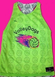 VolleyDogs Reversible Jerseys