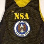 NSA Pinnies – Black and Gold Pinnies