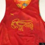 Lobster Pinnies – Lobster Reversible Jerseys – Tye Die Pinnies