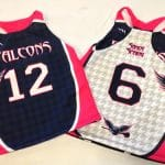 Girls Sublimated Lacrosse Pinnies – Lady Falcons Lacrosse Pinnies