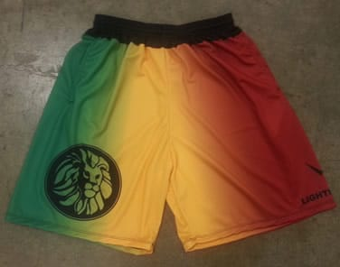 rasta flag shorts