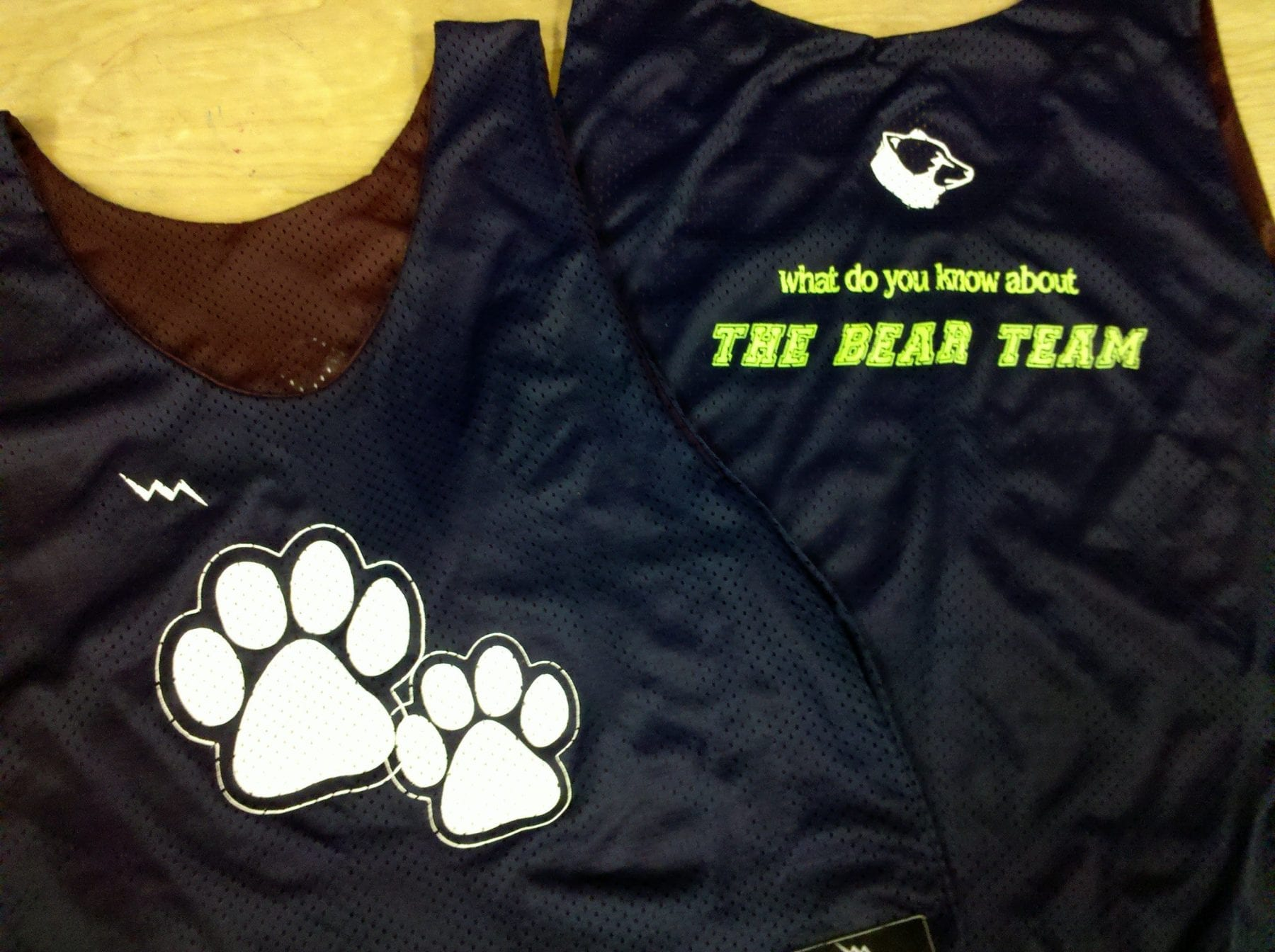 bear team pinnies