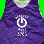 Beastie Bots Pinnies
