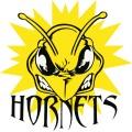 hornets0