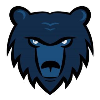 Bears Sports Apparel | Custom Apparel With Bears | Lightning Wear